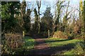 ST5492 : Footpath in Park Redding by Chris Heaton