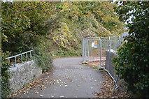SX4953 : South West Coast Path by N Chadwick
