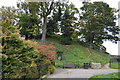 TQ5846 : The Motte, Tonbridge Castle by N Chadwick
