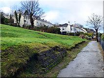 NS3174 : Birkmyre Park by Thomas Nugent