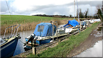 TG3204 : Boats moored at Rockland Staithe by Evelyn Simak