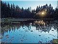NH6134 : Mill Pond by valenta