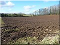 SE3078 : Bare field, south of Fox Covert by Christine Johnstone