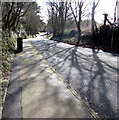 SM9310 : Tree shadows on Church Road, Johnston by Jaggery