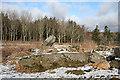 NJ4237 : Nether Dumeath Recumbent Stone Circle (5) by Anne Burgess