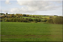 ST0104 : The Culm Valley by N Chadwick