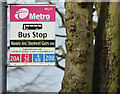 J3974 : Stormont Gates bus stop, Belfast (February 2016) by Albert Bridge