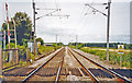NU2023 : Northwards on ECML at site of Fallodon (private) station, 2002 by Ben Brooksbank