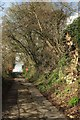 ST7759 : Pipehouse Lane by Derek Harper