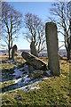 NJ8513 : Tyrebagger Recumbent Stone Circle (8) by Anne Burgess