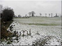 H4277 : Light snow, Mountjoy Forest East Division by Kenneth  Allen