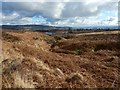 NS3778 : Burn flowing towards Carman Reservoir by Lairich Rig