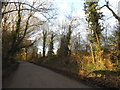 TQ0341 : East Whipley Lane, Rowly by David Howard