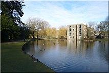 SE6250 : Lakeside near Derwent College by DS Pugh