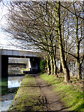 SO9494 : Canal towpath at Deepfields near Coseley, Dudley by Roger  Kidd