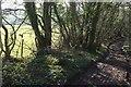 ST7260 : Byway along the Fosse by Derek Harper