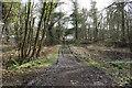 NX3543 : White Loch of Myrton Circular by Billy McCrorie