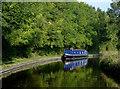 SJ3333 : Llangollen Canal north of Hindford, Shropshire by Roger  Kidd