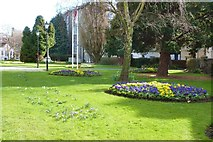 TL7006 : Spring flowers at Chelmsford Cathedral by Derek Voller