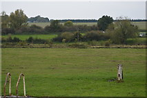 SU3268 : Freeman's Marsh by N Chadwick