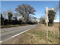 TG2504 : B1332 Bungay Road & footpath sign by Adrian Cable