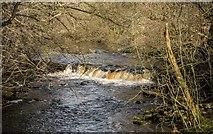 SK1985 : River Derwent by Peter McDermott