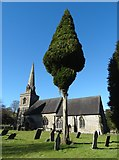 SK1750 : St Edmund's Church, Fenny Bentley and a tree by Neil Theasby