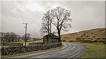 SD7880 : Tree and ruin at Gearstone by Peter Moore