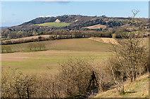 TQ2352 : Towards Betchworth Quarry by Ian Capper