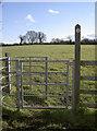 ST5956 : Away across the fields by Neil Owen