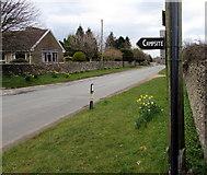 SO8700 : Campsite this way, Minchinhampton by Jaggery