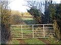 ST5758 : Gate by Hart's Farm Cottage by Neil Owen