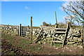 NX4843 : Stile and Kissing Gate by Billy McCrorie