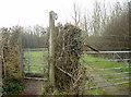 ST6465 : To Woollard by Neil Owen