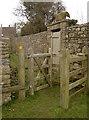 ST6762 : Path into Stanton Prior by Neil Owen