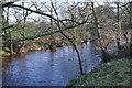 SE1764 : River Nidd by N Chadwick