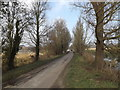 TM4566 : Eastbridge Lane, Eastbridge by Adrian Cable