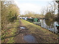 TQ0588 : Ionnes Marie and Pulse 1, narrowboats near Harefield by David Hawgood