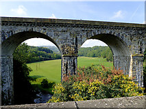 SJ2837 : Viaduct and pasture near Chirk by Roger  Kidd
