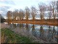 SP9958 : River Great Ouse near Felmersham by PAUL FARMER