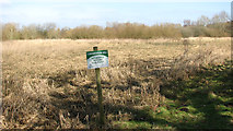 TG1608 : Conservation area north of Colney Wood by Evelyn Simak