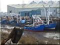 TF6120 : LN22 and LN474 - The Fisher Fleet, King's Lynn by Richard Humphrey