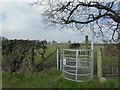 SJ1356 : Kissing gate on Jericho Lane by Eirian Evans
