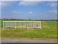 TL1133 : Bridge over ditch by Robin Webster