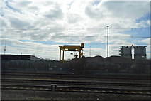 TQ2182 : Sidings, Willesden Junction by N Chadwick