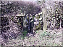 SK1751 : Squeeze stile and gate by Ian Calderwood