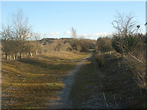 SS8280 : Public footpath by South Cornelly by eswales
