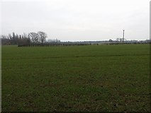SJ7763 : Arable field near Duke's Oak Farm by Stephen Craven