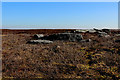SD9735 : Gritstone Outcrops on Withins Height by Chris Heaton