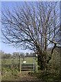 ST5859 : Ascending Burledge Hill by Neil Owen